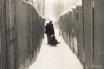 Dad pulling child on sledge